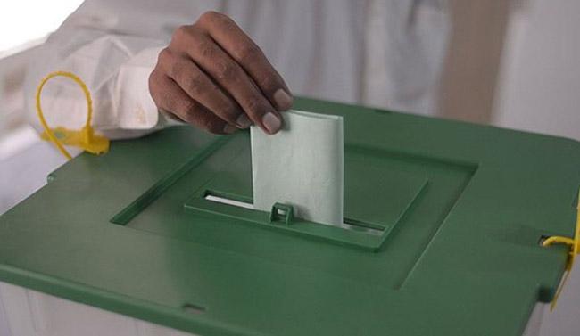 dir-election